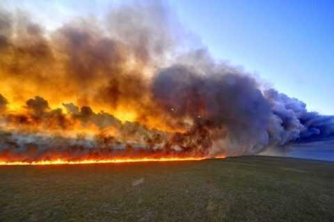 """Amazonas """"El pulmón de la Tierra"""" se consume en llamas hace 16 días"""