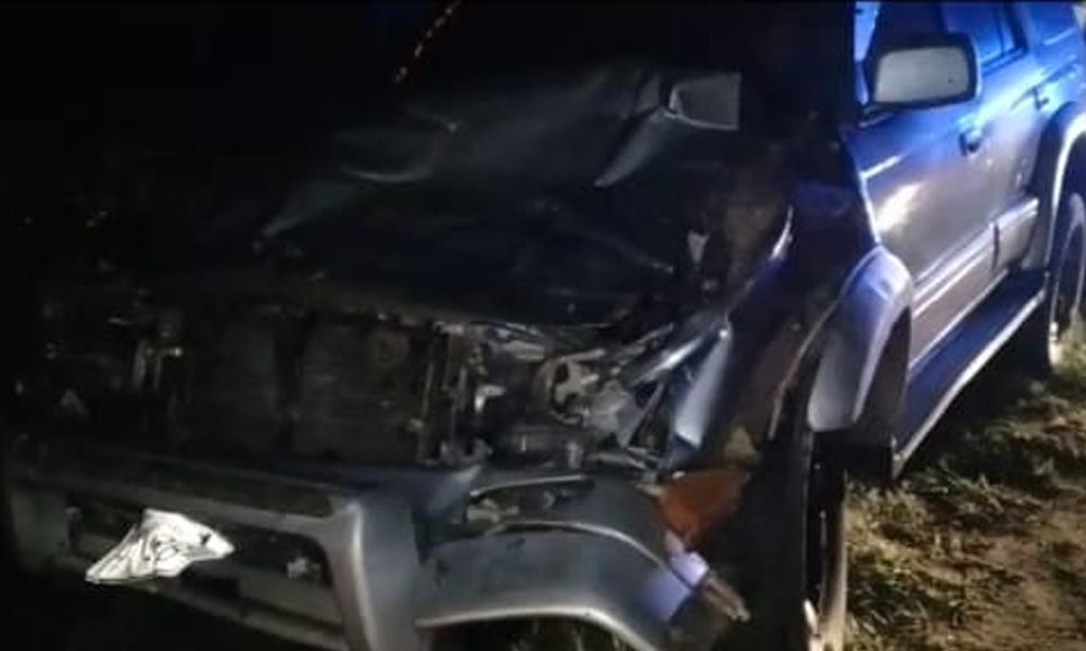 Coronel Oviedo: Agente de la caminera le chocó a una vaca