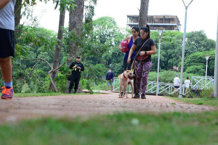 Multa para quienes saquen a pasear a sus mascotas sin collar, cadena ni bozal